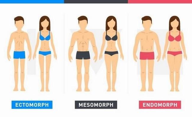 Cơ thể bạn thuộc loại nào