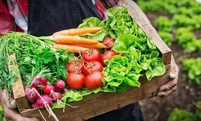 Chế độ ăn uống hợp lý giúp cơ thể săn chắc và thon gọn
