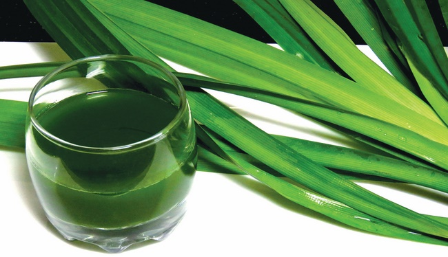 Khi kết hợp với lá dứa sẽ giúp cho món đồ uống trở nên hấp dẫn hơn