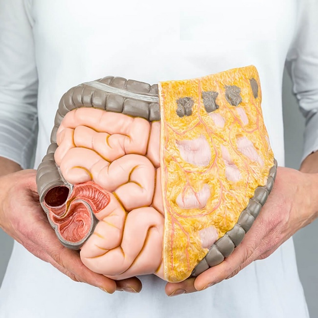 Bưởi có khả năng đốt cháy chất béo hiệu quả nhờ hàm lượng vitamin C cao
