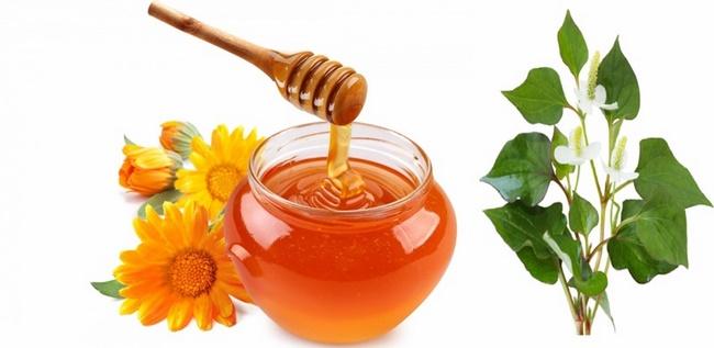 Công thức dùng nước rau diếp cá với mật ong trị mụn