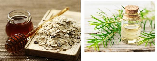 Điều trị mụn bằng bột yến mạch, tinh dầu tràm trà và mật ong