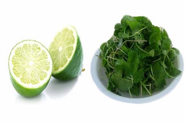 Điều trị mụn bằng chanh và rau má
