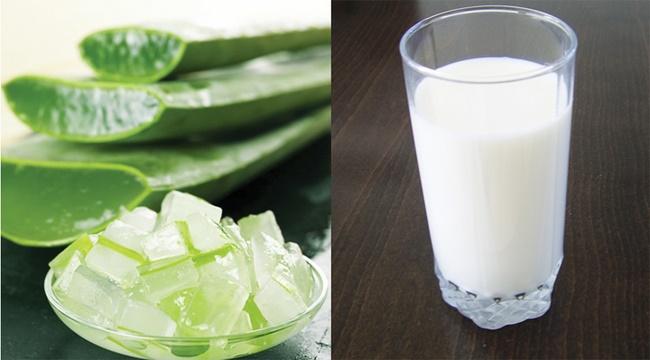 Điều trị mụn bọc bằng nha đam và sữa tươi không đường