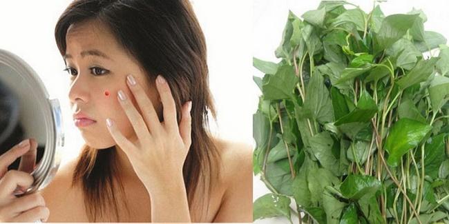 Những lưu ý khi sử dụng rau diếp cá trị mụnhiệu quả
