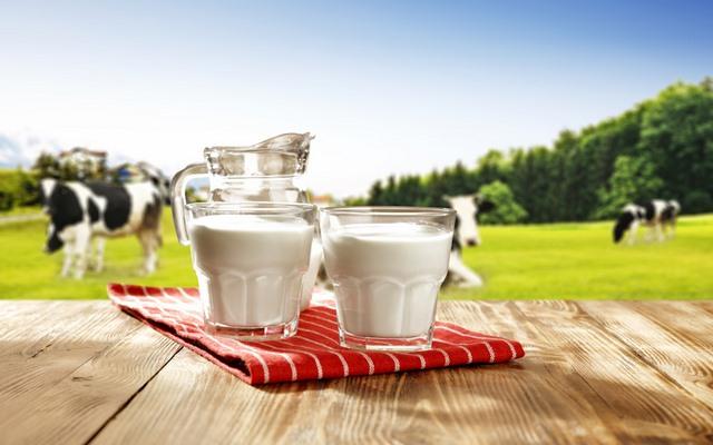 Uống sữa giảm mỡ bụng
