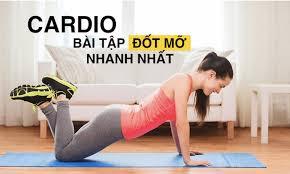 Bài tập Cardio giảm mỡ toàn thân trong 1 tháng hiệu quả