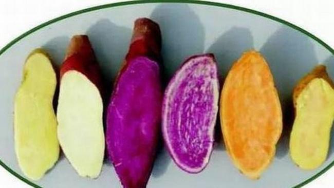 Những câu hỏi thường gặp khi ăn khoai lang giảm cân